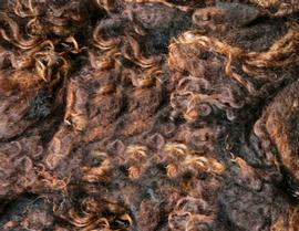 2 x Washed Hebridean Fleece + UK P &P